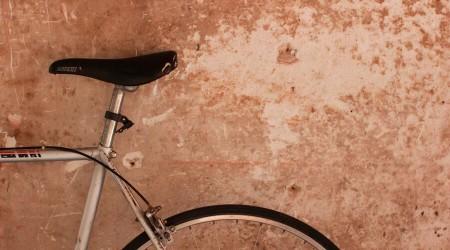 Selim para bike