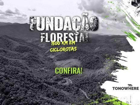 fundação-florestal